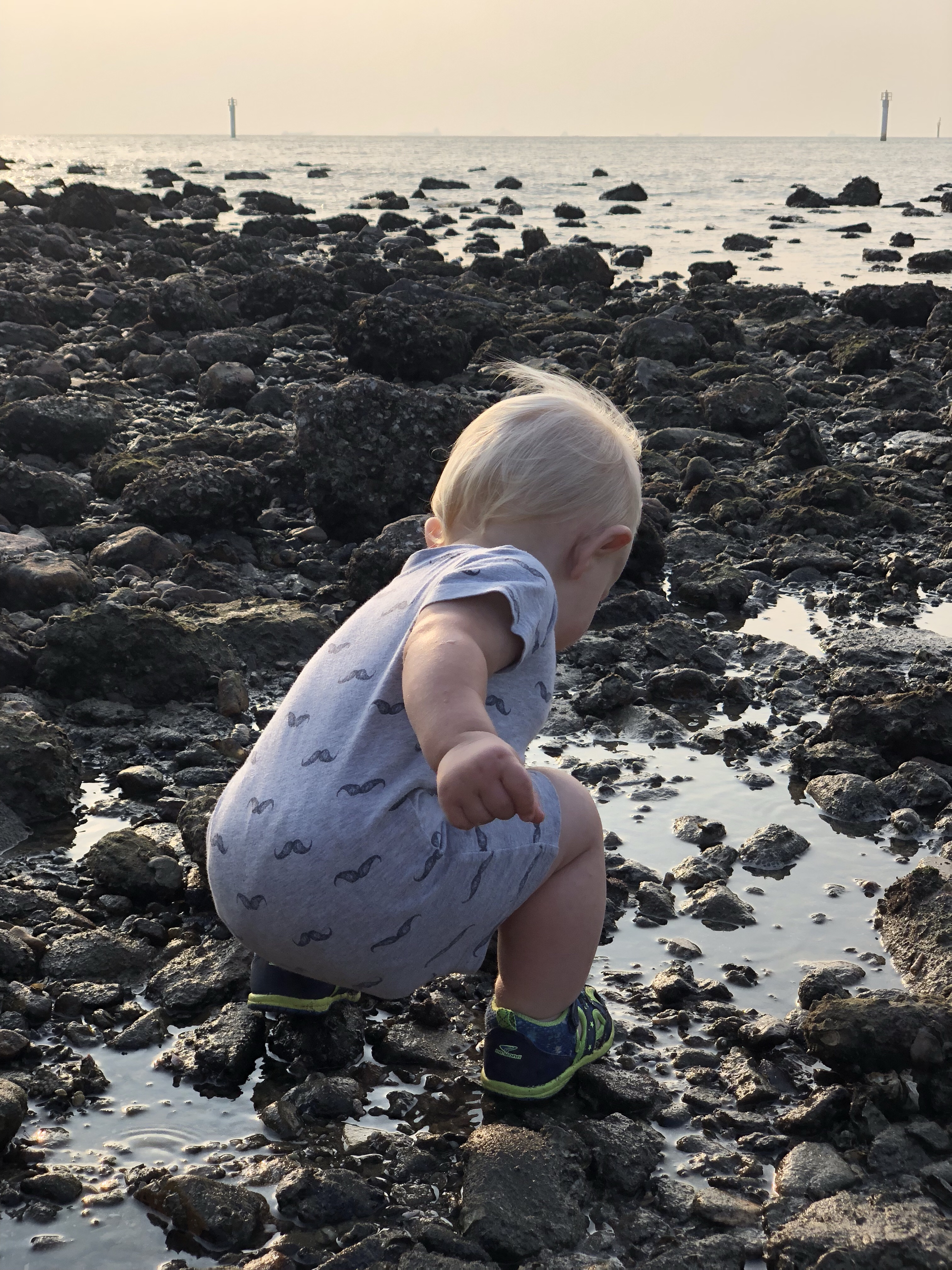 sunset beach at low tide | questions to ask yourself when studying tide pools | tide pools | Hong Kong | children science | teaching resources | Homeschooling | Unschooling | sealife science lessons | This Indulgent Life