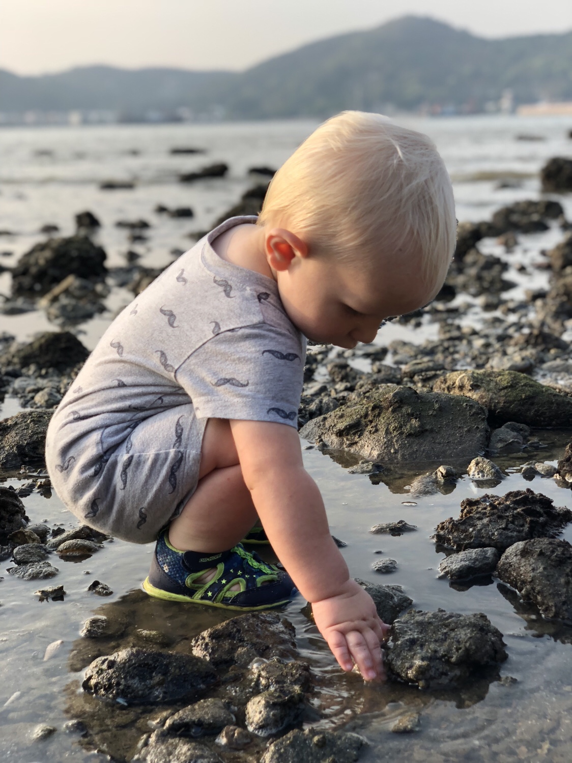 child explores the beach | questions to ask yourself when studying tide pools | tide pools | Hong Kong | children science | teaching resources | Homeschooling | Unschooling | sealife science lessons | This Indulgent Life