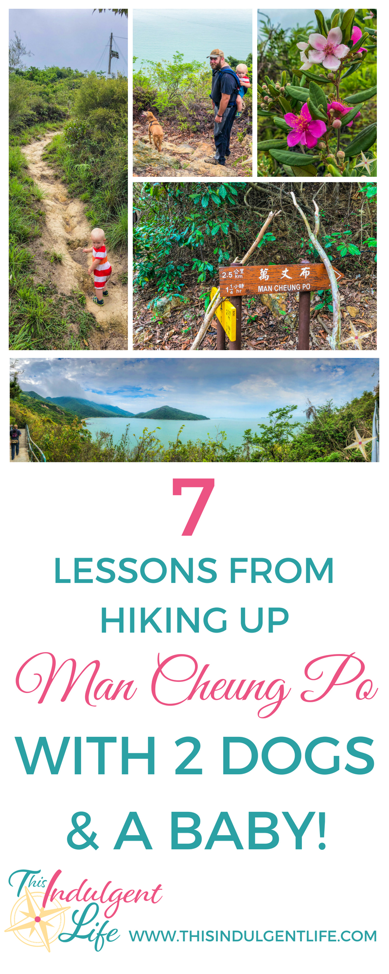 7 lessons from hiking up man cheung po with 2 dogs and a baby| This Indulgent Life | Live this adventurous life by hiking with your family. Explore these 7 tips we learned as beginner hikers with 2 dogs and a baby. | #hikingwithkids #hikingforbeginners #naturelovers #hikingtips #mancheungpo #hongkonghikes #hikingwithchildren #hikingtrails #hikinggear #hikingvideo #hikingwithdogs #familiybloggers #familyvlogs #familyadventures #getoutside