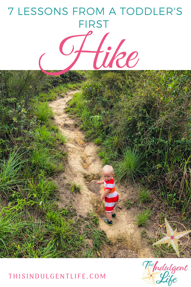 7 lessons from toddlers first hike | This Indulgent Life | See our 7 lessons we learned on our first hike with our toddler. From enjoying the journey to bringing more water, these tips will help you prepare for your own family adventure. | #hikingwithkids #hikingforbeginners #naturelovers #hikingtips #mancheungpo #hongkonghikes #hikingwithchildren #hikingtrails #hikinggear #hikingvideo #hikingwithdogs #familiybloggers #familyvlogs #familyadventures #getoutside