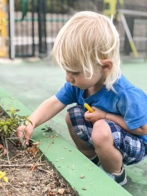 My son plays in the dirt in Hong Kong | This Indulgent Life | It was important to find a helper that would allow my son to play in the dirt.