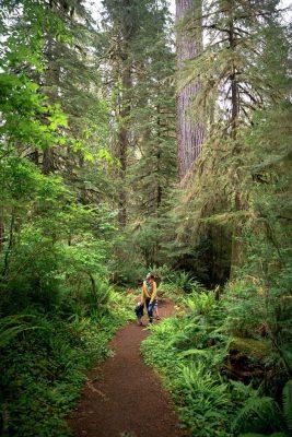 national park goals- olympic national park