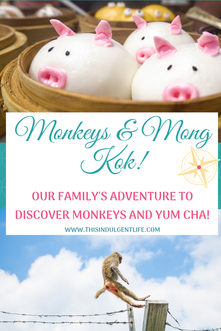 Monkeys and Mong Kok- Our Family's Adventure to Experience Monkeys and Yum Cha! | #hongkongtravels #bucketlistexperience #monkeysinhongkong #yumcha #funfood #foodietravel #familyadventures #hikingfamily #hongkongfood #familytravel #travelingwithtoddlers #travelwithkids